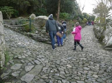 nature hunt St Michael's Mount