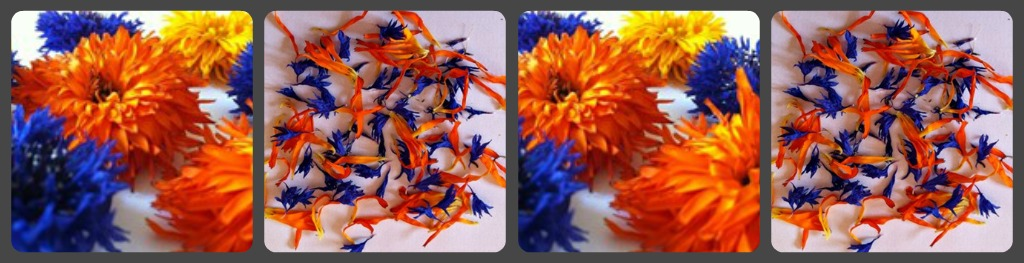 flower-drying-collage
