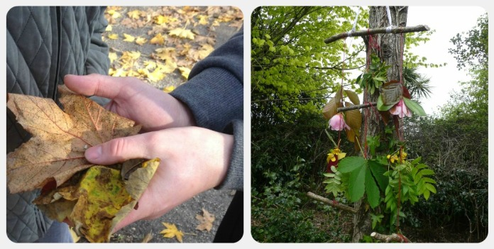 bird feeder and leaves