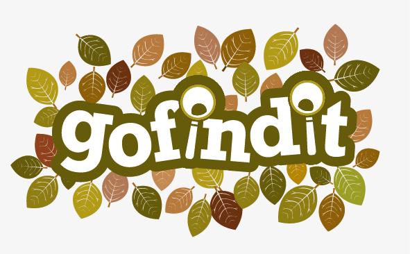 gofindit logo