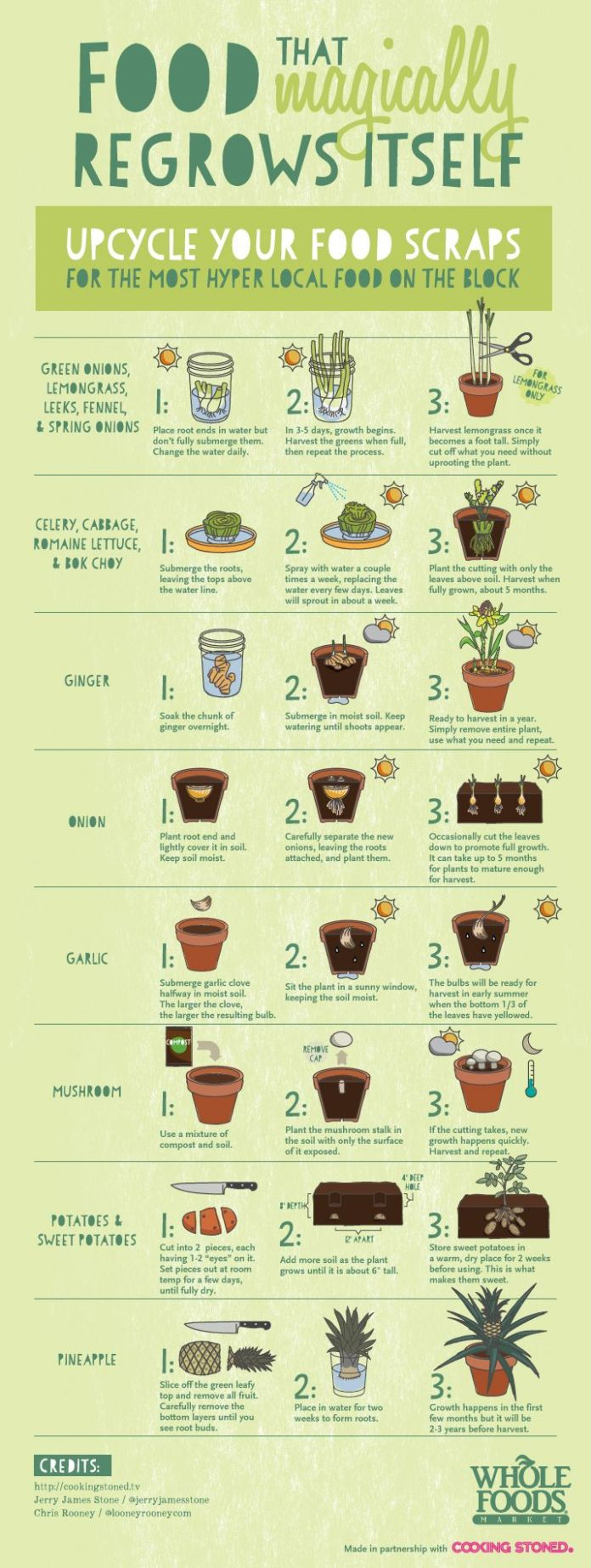 guide to upcycling food scraps