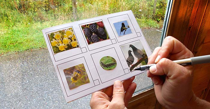 Using a nature spotting postcard